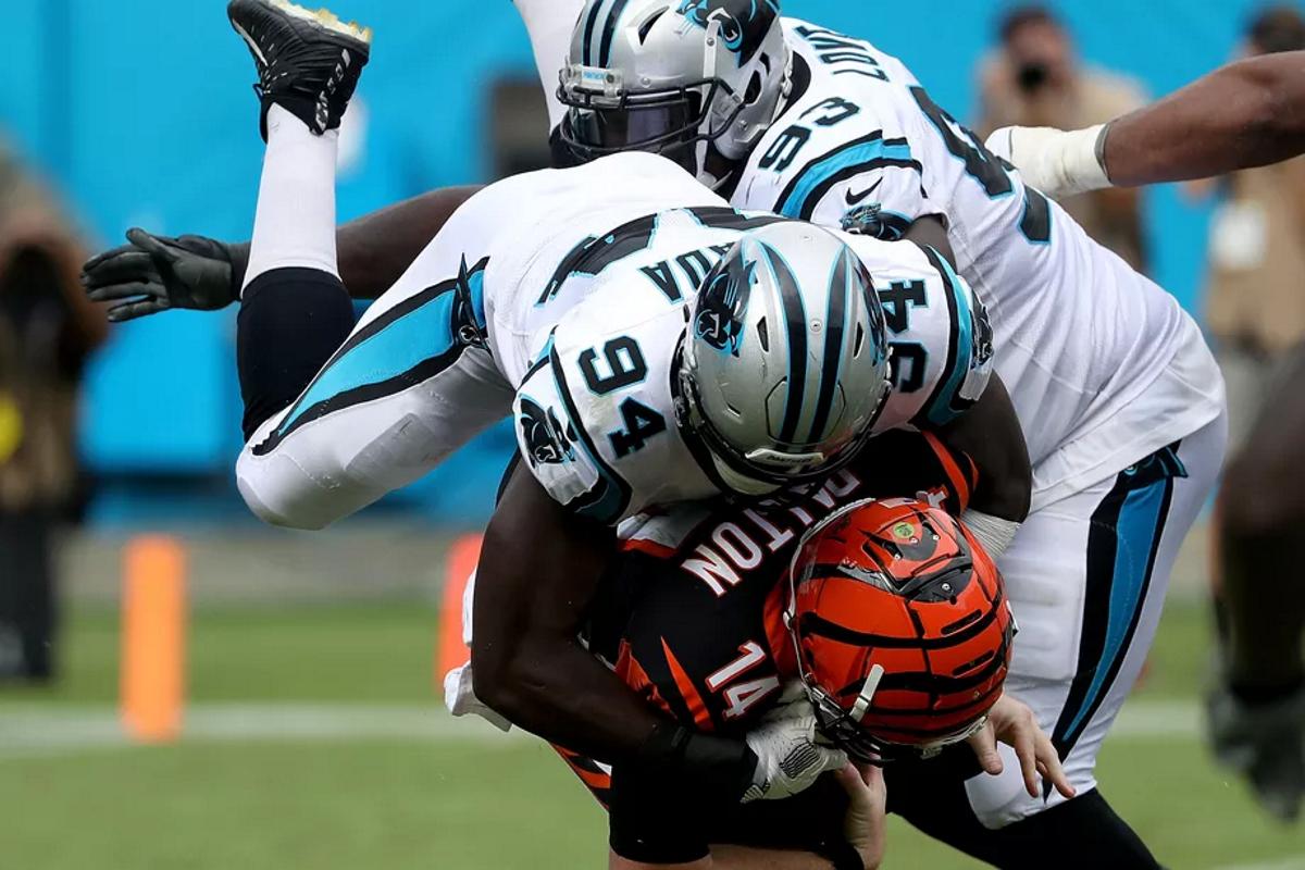 NFL-2019-Carolina-Panthers-Efe-Obada.png